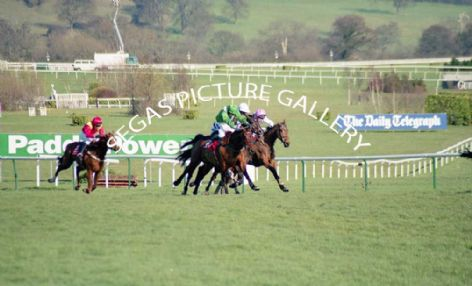 Racehorse Rule Supreme with Jockey, D J Casey and Exotic Dancer with Jockey, P Carberry